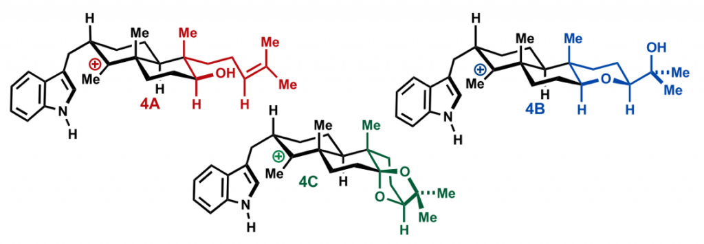 newhouse total synthesis computer-assisted